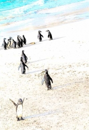 penguins with ele